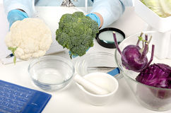 Hands holding a broccoli and cauliflower in laboratory Stock Photo
