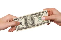Hands  holding cash Royalty Free Stock Image