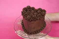 Hands holding chocoalte heart rose cake. Hands holding chocolate heart cake with chocolate buttercream roses on glass plate pink textured background for Stock Image