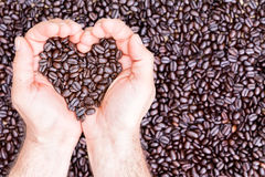 Hands holding coffee beans in shape of heart Royalty Free Stock Photography