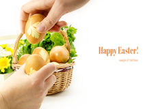 Hands holding colored eggs Stock Images