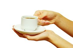 Hands holding a cup Stock Photos