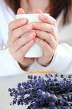 Hands holding a cup Royalty Free Stock Image