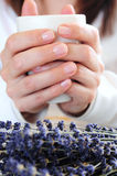 Hands holding a cup Royalty Free Stock Photos