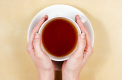 Hands holding cup of tea Stock Images