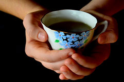 Hands Holding Cup of Tea. A pair of hands holding a cup of tea in a cute tea cup with blue flowers on black background. A winter time comfort royalty free stock images