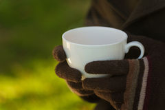 Hands holding a cup Royalty Free Stock Photography