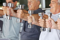 Hands holding dumbbells in gym Stock Photos
