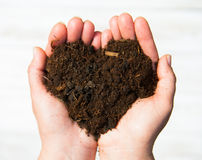 Hands holding an earth heart on white background. Ecology concep Stock Photos