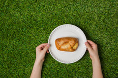 Hands holding empty paper plate with bun on grass Royalty Free Stock Images