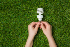 Hands holding  energy saving eco lamp over grass Stock Photos