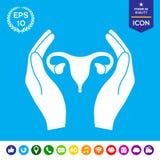 Hands holding Female uterus - protection icon Royalty Free Stock Photo