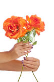 Hands holding flowers Stock Photography
