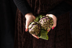 Hands Holding Fresh Artichokes Royalty Free Stock Photography