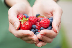 Hands holding fresh berries Stock Photos