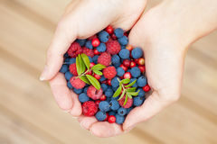 Hands holding fresh berries Royalty Free Stock Photos