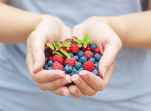 Hands holding fresh berries Royalty Free Stock Images