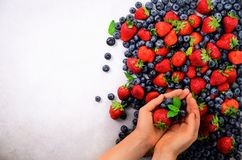 Hands holding fresh berries. Healthy clean eating, dieting, vegetarian food, detox concept. Close up of woman hands over. Berries background Stock Image