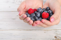 Hands holding fresh berries. Royalty Free Stock Image