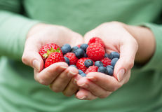 Hands holding fresh berries Royalty Free Stock Image