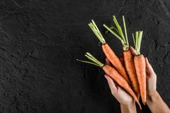 Hands holding fresh carrots over black stone background. Food concept, top view, copy space royalty free stock photos