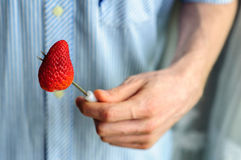 Hands holding fresh strawberry with blurred shirt on background Stock Photo
