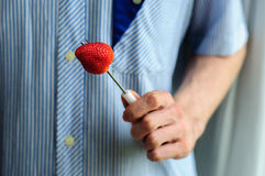 Hands holding fresh strawberry with blurred shirt on background Royalty Free Stock Images