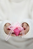 Hands holding gift wrapped box Stock Photos