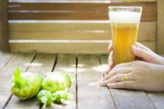 Hands holding glass noni juice and noni fruit on wooden table. 1 Stock Photo