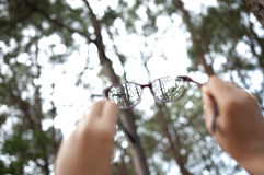 Hands holding glasses on fresh air. At natural forest background Royalty Free Stock Images