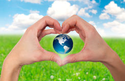 Hands holding globe with grassy background - Stock Image Royalty Free Stock Photo