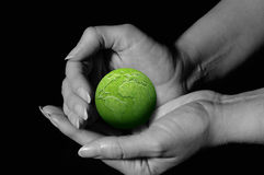 Hands holding green earth Stock Photos