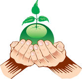 Hands holding green  ecology symbol Royalty Free Stock Images