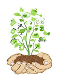 Hands holding green icons Royalty Free Stock Photography