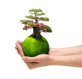 Hands holding green planet stock illustration
