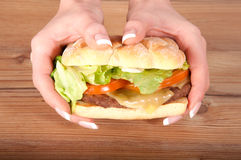 Hands holding hamburger Royalty Free Stock Photo