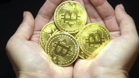 Hands Holding Handful of Golden Bitcoins. Cryptocurrency and Financial Success Concept. Shot with Sony a6300 29,97 FPS 4k stock video footage