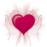 Hands holding the heart. Hands protecting the heart. Heart in hands concept Royalty Free Stock Photos