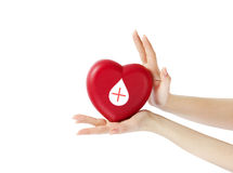 HANDS HOLDING A HEART WITH DONOR SIGN royalty free stock images
