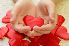 Hands holding a heart in their palms royalty free stock photo