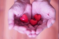 Beautiful Heart in hands royalty free stock photography