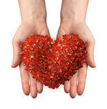 Hands holding a heart shaped red leafs Royalty Free Stock Photos
