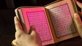 The Holy book of muslims/ Quran hands hold the koran. Hands Holding holy book of muslims on the black background royalty free stock image