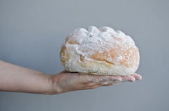 Hands holding homemade country bread. Over grey background Royalty Free Stock Photo