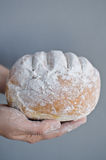 Hands holding homemade country bread. Over grey background Royalty Free Stock Photos