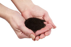 Hands holding humus soil Stock Photography