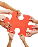 Hands holding jigsaw puzzle as teamwork concept. Many hands holding a red jigsaw puzzle piece as teamwork concept Royalty Free Stock Photography