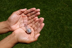 Hands holding a light bulb Stock Photography
