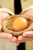 Hands holding nest with egg Royalty Free Stock Images