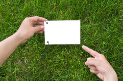 Hands holding a paper note. White sheet in woman`s hands for your simple text. Green grass is background. Finger point on note Stock Images